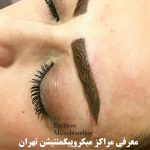آموزش آرایش دائم ، آموزش آرایش دائم لب ، آموزش آرایش دائم صورت ، کتاب آرایش دائم صورت زنانه فاطمه باستانی ، آموزش آرایش دائم فنی حرفه ای
