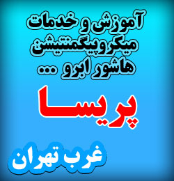 تاتو هاشوری ابرو ، اموزش تاتو ابرو حرفه ای ، تاتو ابرو تهران ، تاتو ابرو زنانه