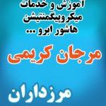 خدمات میکروپیگمنتیشن و هاشور ابرو غرب تهران